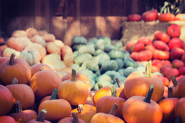Pumpkin Skin Care Products & The Benefits of Pumpkin for Your Skin