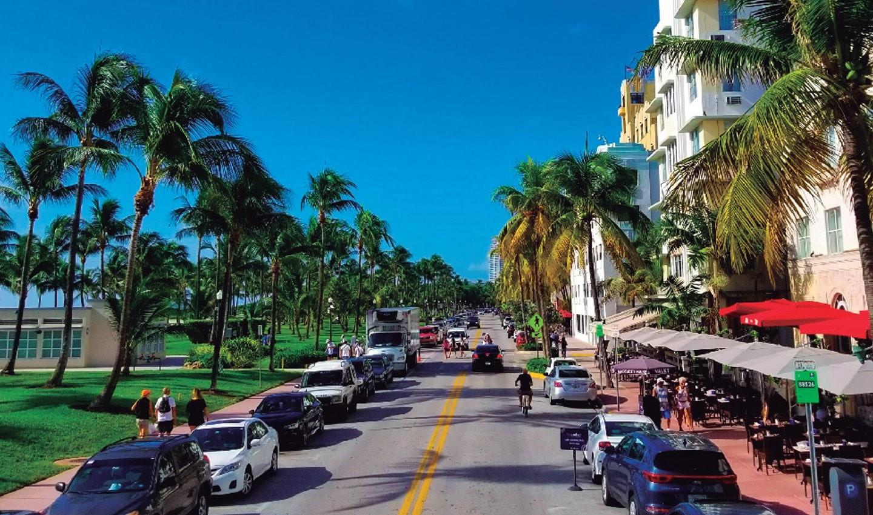 everglades-and-miami-city-tour-7-.jpg