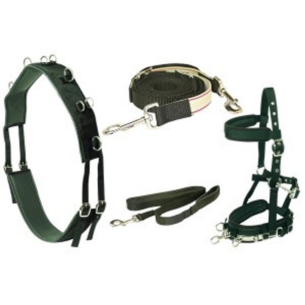 Equi-Prene Anti-Gall Lunging Starter Kit