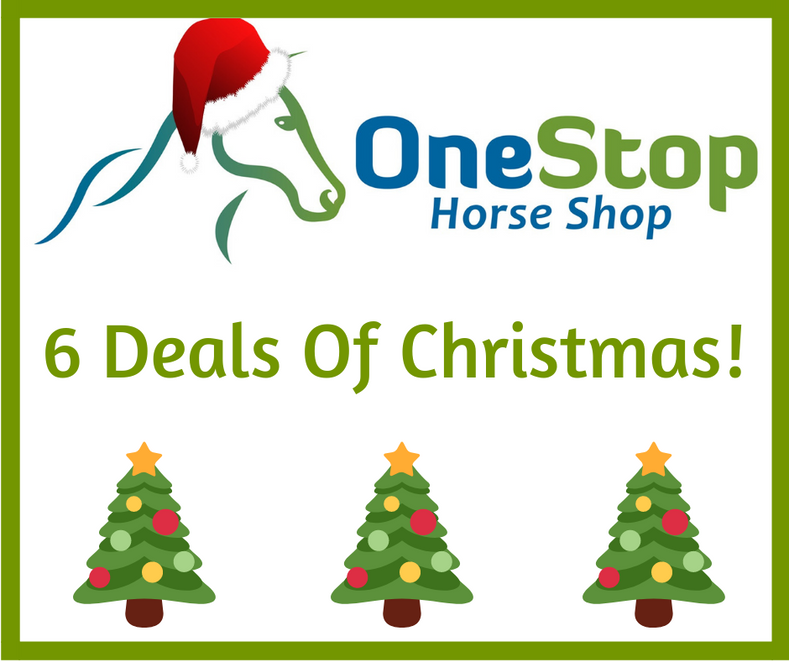 6 Deals of Christmas - 20% Off Breeches!