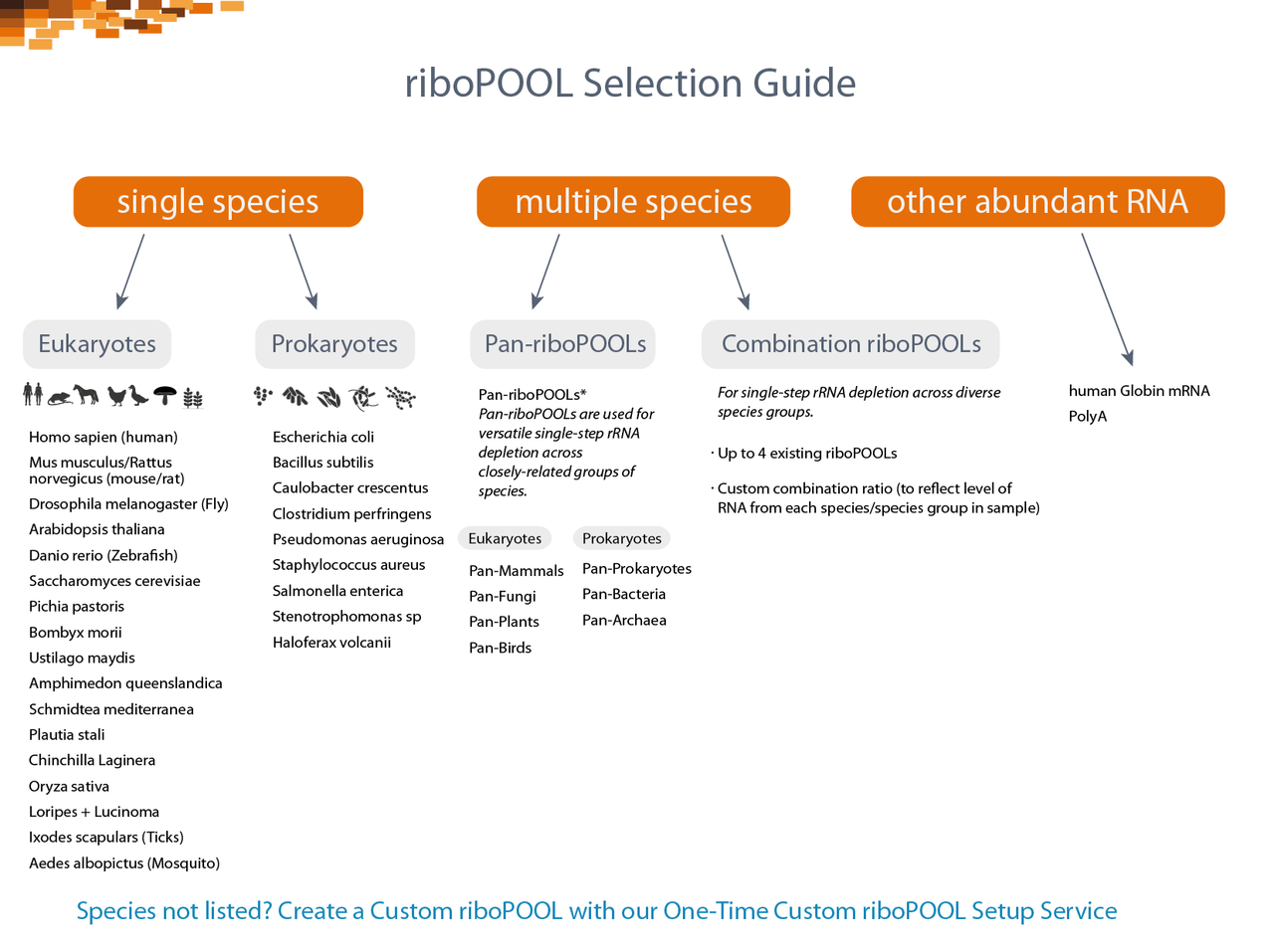 riboPOOL Selection Guide