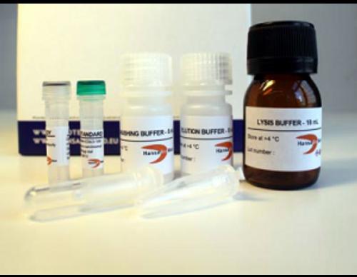 Exosome RNA Basic Kit (20 purifications)