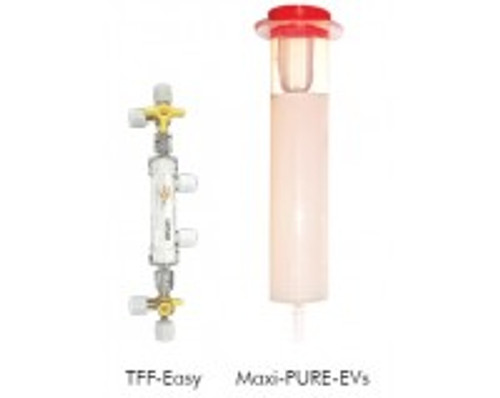 PURE-EVs PLUS: Size exclusion chromatography columns and TFF concentrator (5 columns)