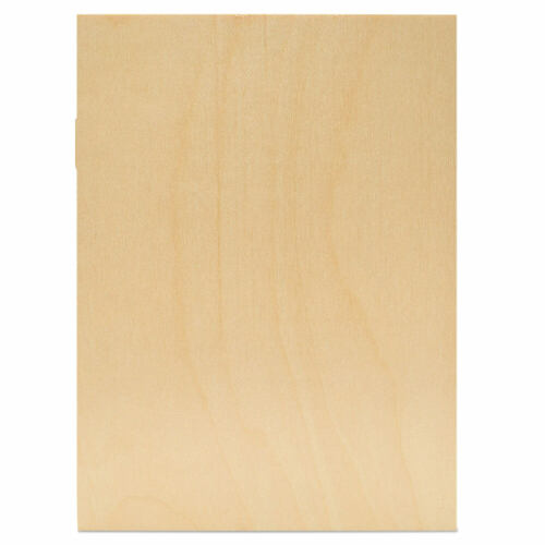 "Rectangle Cutout, 9"" x 12"", 1/8"" Thick"