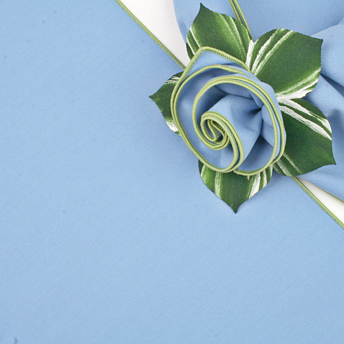 Light Blue with HoneyDew Trimmed  Napkin