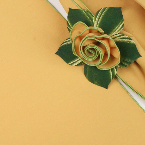 Gold with HoneyDew Trimmed  Napkin
