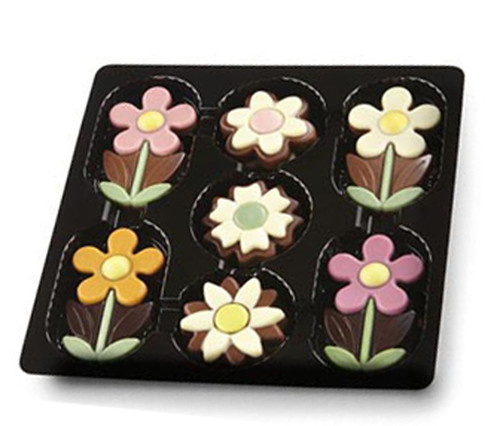 Belgian Chocolate Flower Box, by Dolfin,  and more Confectionery at The Professors Online Lolly Shop. (Image Number :9206)