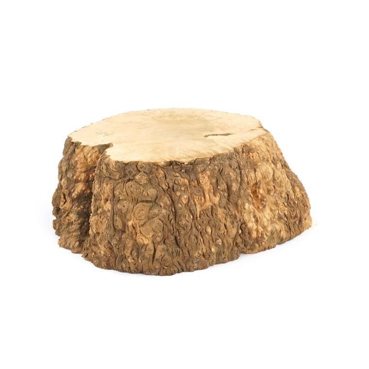 Mimmo Briar Burl Bowl Slice One-Off 02420