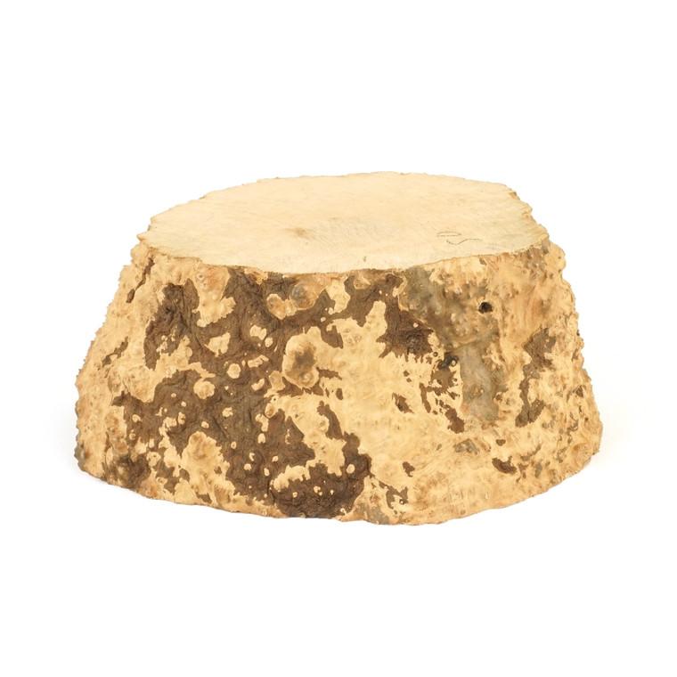 Mimmo Briar Burl Bowl Slice One-Off 02424