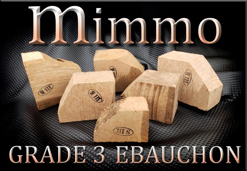 MIMMO GRADE 3 EBAUCHON