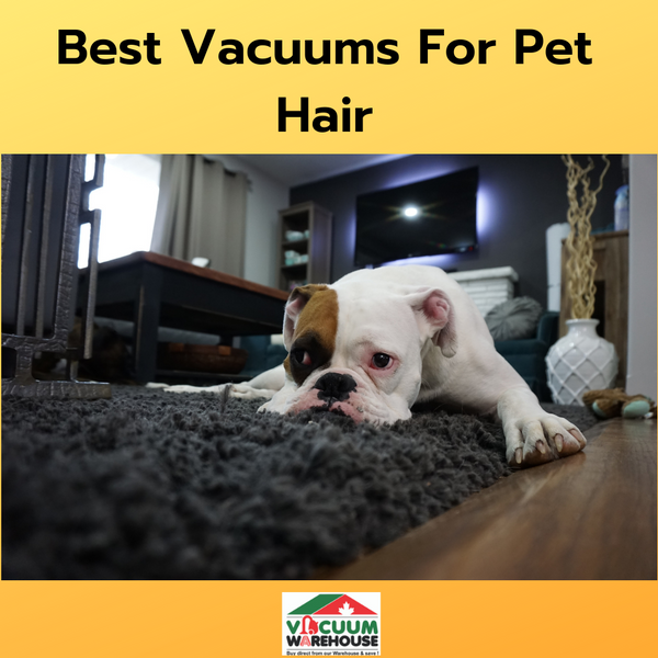 Best Vacuums For Pets. From: