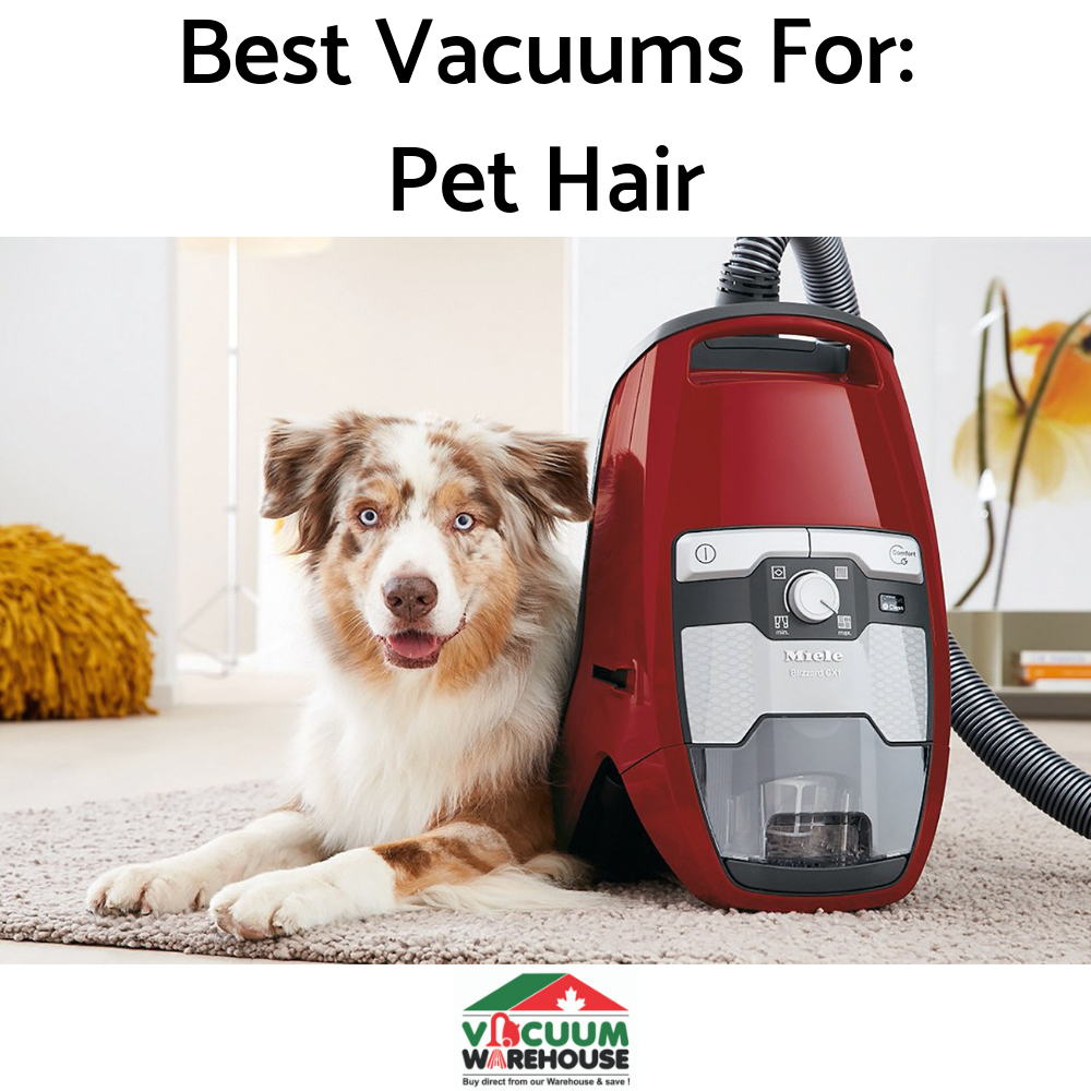 best-vacuums-for-pet-hair