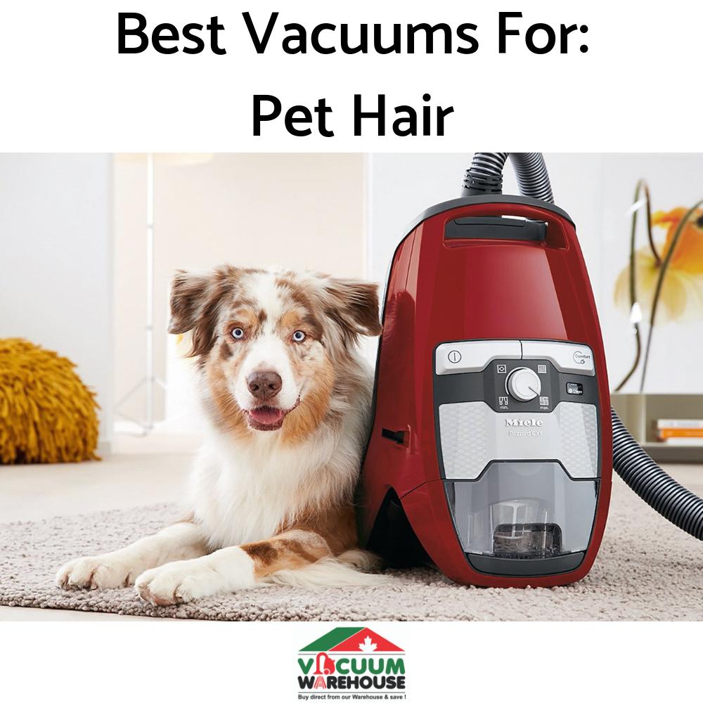 best-vacuums-for-pet-hair