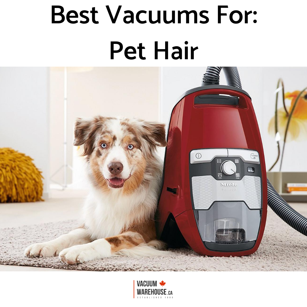 best-vacuums-for-pet-hair.png