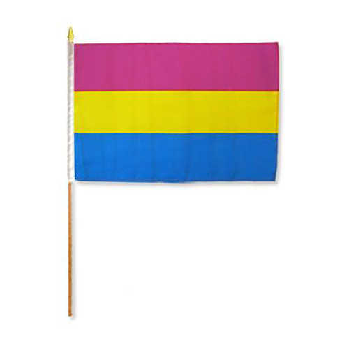 "Pansexual 12"" x 18"" Stick Flag"