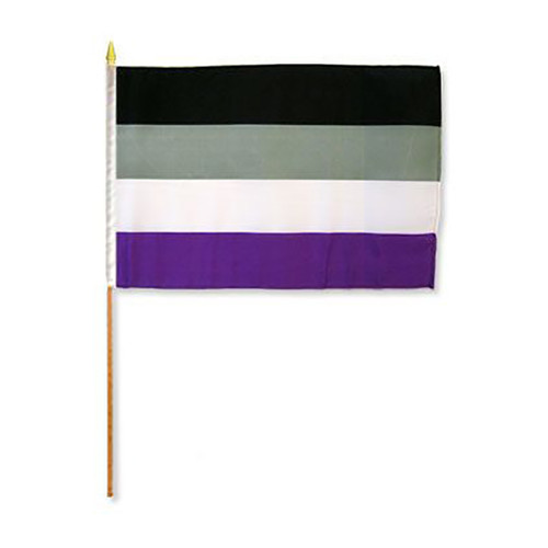 "Asexual 12"" x 18"" Stick Flag"