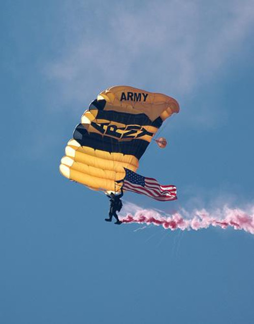 Golden Knights - Downloadable Image