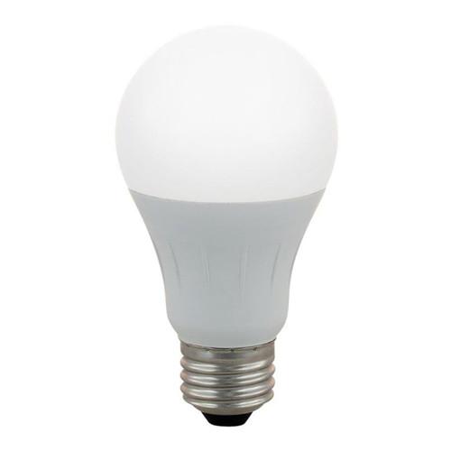 LED A19 - 5.5W - 40W Equiv - 450 Lumens - Energetic Lighting