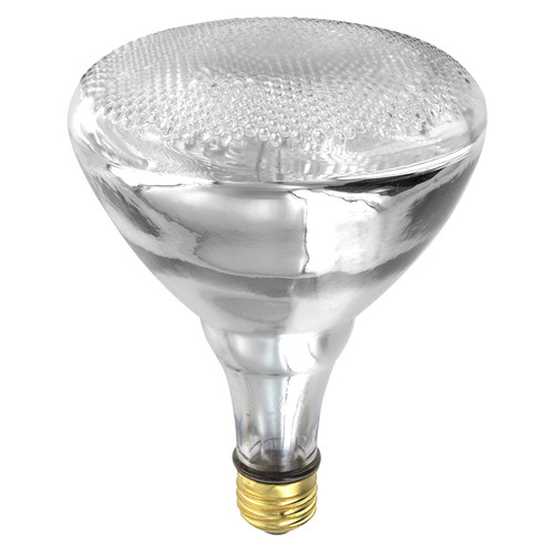 Directional BR40 Halogen Bulb - indoor floodlight