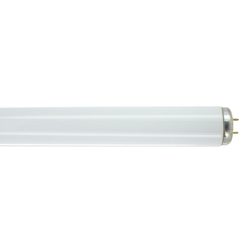 2FT Fluorescent Tube - 20 Watts - SP41 Finish - Medium Bi-Pin