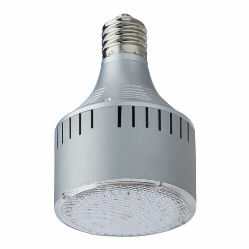 30-Watt Light Efficient Design 2841 Lumens E39 LED Recessed Light Bulb