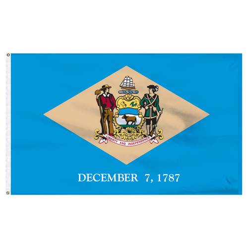 Delaware Flag 5 x 8 Feet Nylon