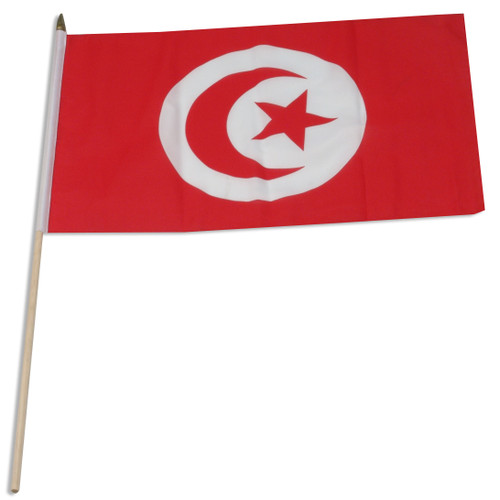 Tunisia flag 12 x 18 inch
