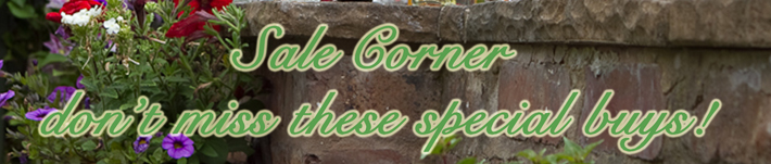 Sale Corner - Our Special Offers!