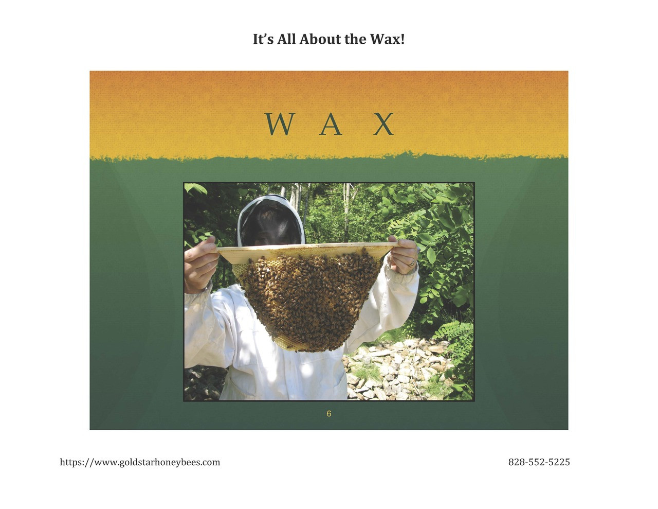 Top Bar Hives means beeswax made BY bees, FOR bees.