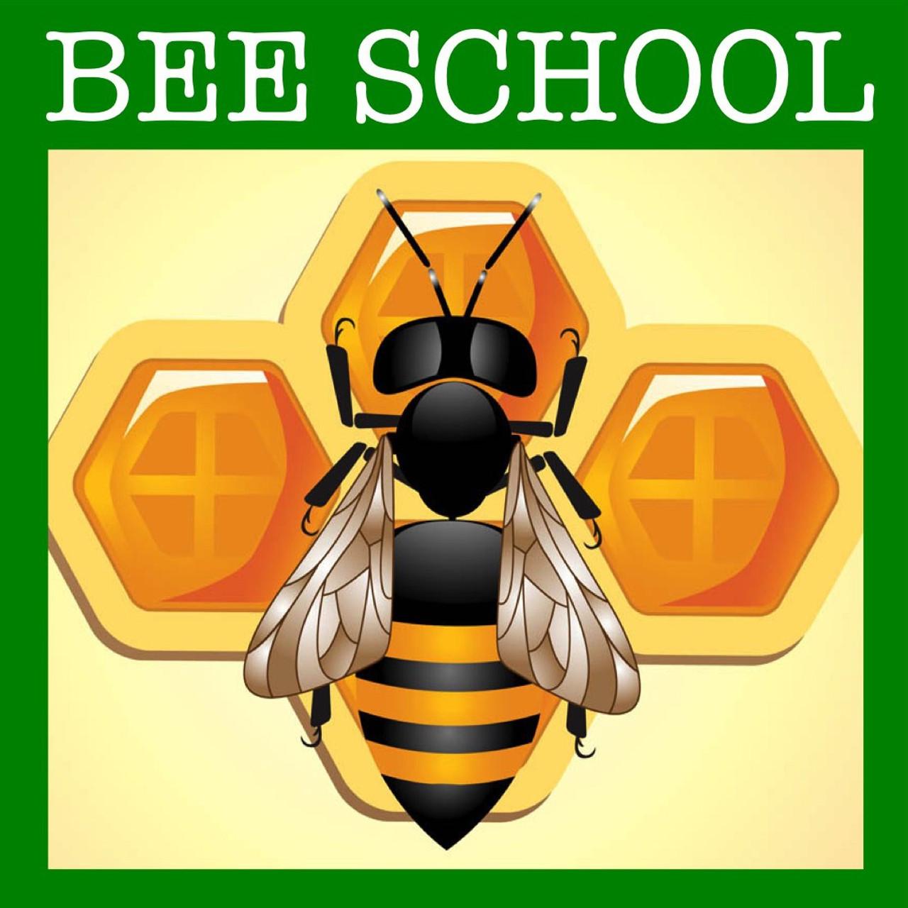 Top Bar Beekeeping Class: Burnsville, NC - March 9 and 10, 2019
