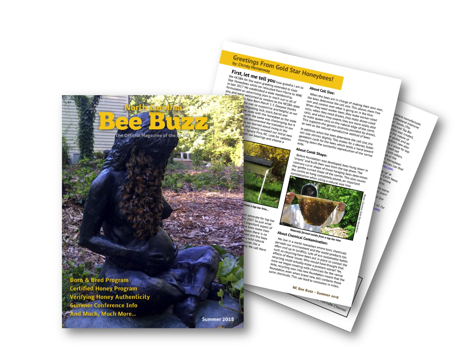 Article by Christy Hemenway, of Gold Star Honeybees, featured in North Carolina Bee Buzz Magazine!