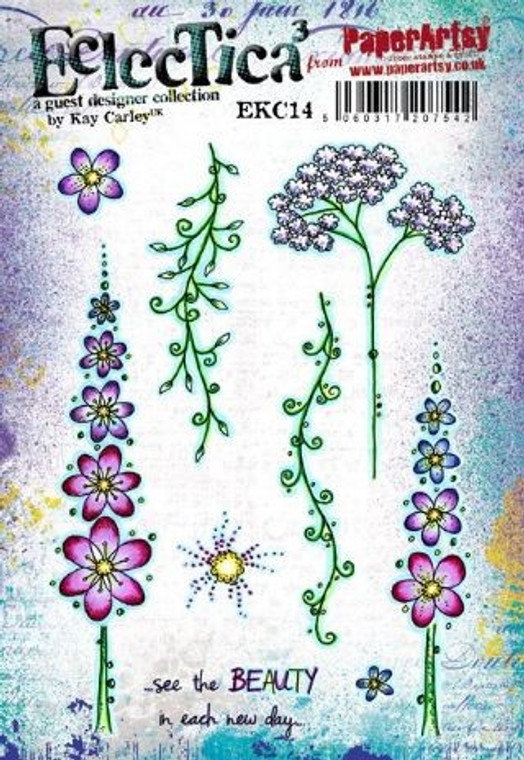 PaperArtsy Cling Mounted Stamp Set - Eclectica³ - EKC14
