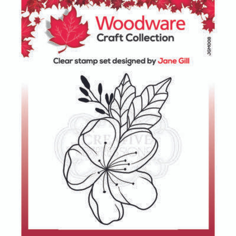 """Woodware Clear Singles Mini Floral Wonder 3.8"""" x 2.6"""" Stamp by Jane Gill (JGM008)  • Great stamp for cards, mixed media and scrapbooking • Can be used on a great variety of surfaces depending on the ink type, use with ink pads or paints • High quality polymer stamp designed and made in UK"""
