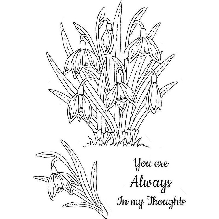 Sweet Dixie Stamp Set - Snowdrops - (SDCSA6296)  Stamps ideal for cardmaking and scrapbooking.