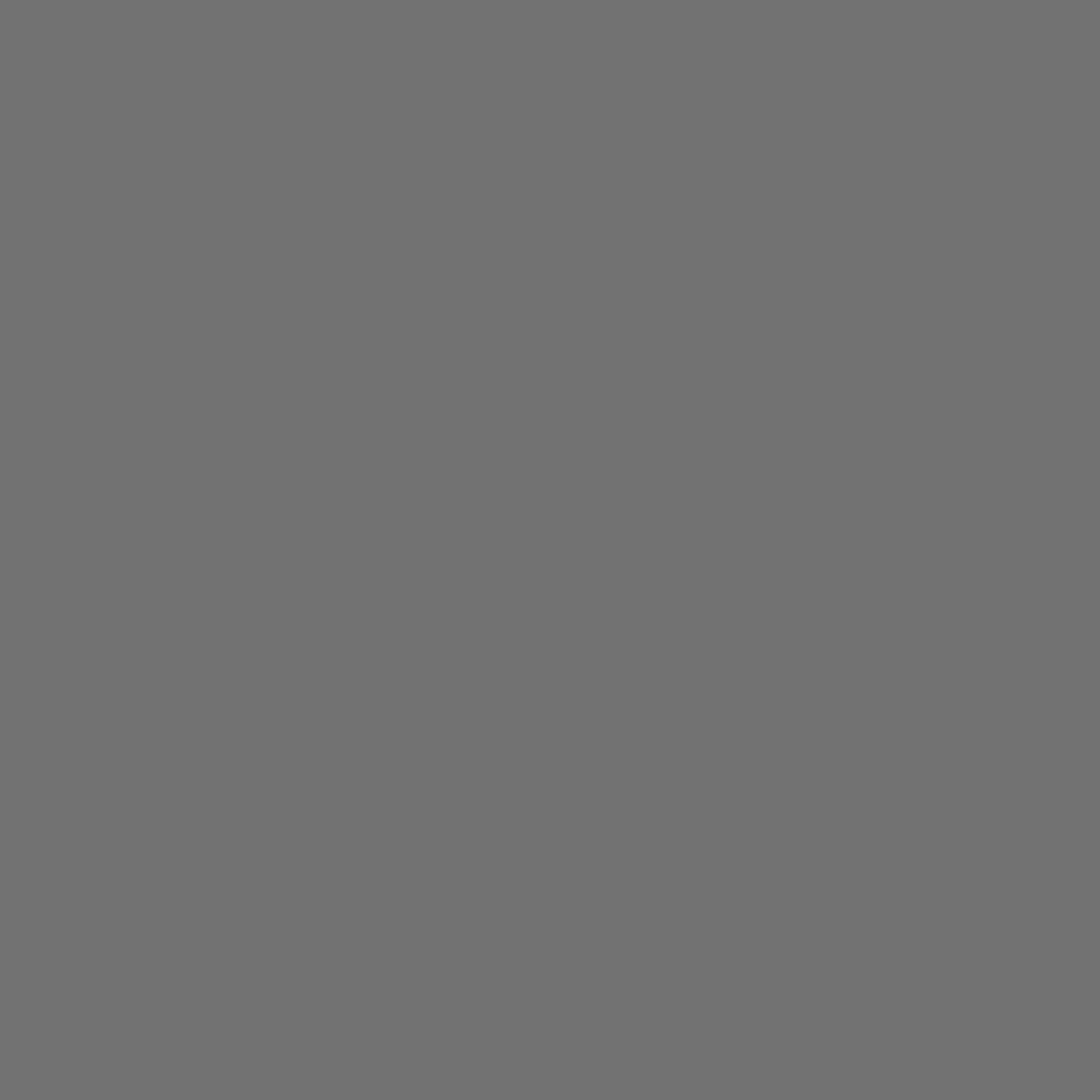 "SUPERIOR SEAMLESS PAPER BACKGROUND 53""X36' - NEUTRAL GREY"