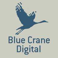 BLUE CRANE VIDEO