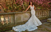 Eve of Milady Bridals 0137216