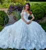 strapless ball gown with v neckline with accenting three dimensional sheer lace bodice, Hand cut embroidered gown with three dimensional accents, sparkle tulle layer underneath chapel train