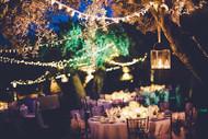 Environmentally Friendly Lighting for a Green Bride
