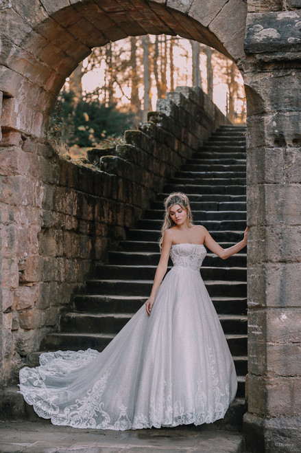 One enchanted evening a fairy godmother transformed a gown into a work of art. This A-line gown features scrollwork inspired-by the intricate details of Cinderellas magic carriage, while sparkling diamond tulle twinkles in the light.