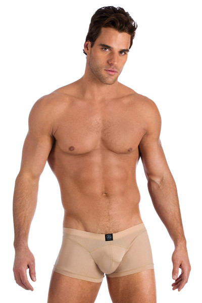 Gregg Homme Underwear Nude Scene Boxer Brief Tan 95505 from Topdrawers Menswear - Full View