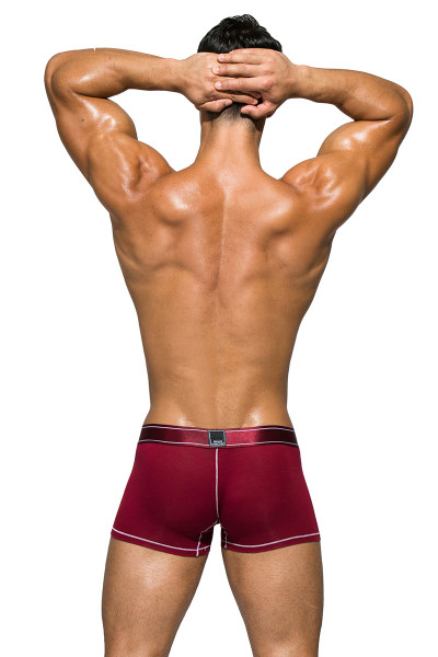 Cranberry Red - Private Structure Platinum Bamboo Trunk PBUZ3749 - Rear View - Topdrawers Underwear for Men