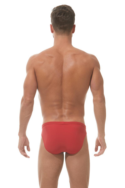 Red/Royal Blue - Gregg Homme Sea Reef Swim Brief 151303 - Rear View - Topdrawers Swimwear for Men