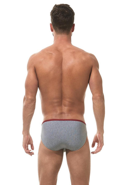71876f6f877 ... Gregg Homme Feel It Brief 162403 - Red - Mens Briefs - Rear View -  Topdrawers
