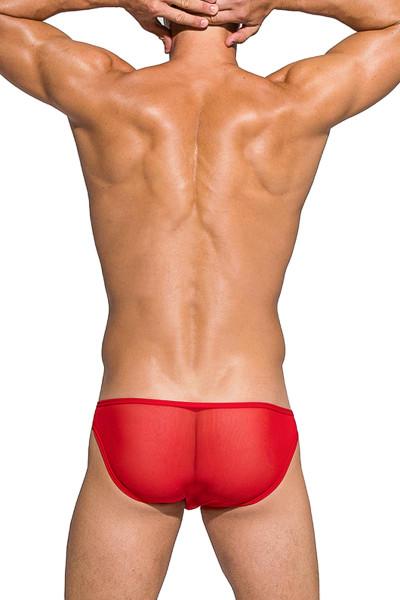 Private Structure Desire Intima Mesh Low Rise Bikini DIAMU3455BT - RD Red - Mens Sheer Bikini Briefs - Rear View - Topdrawers Underwear for Men