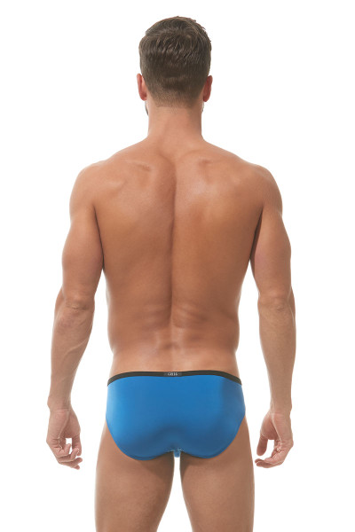 Gregg Homme Voyeur Briefs 100306 - Royal Blue - Mens Briefs - Rear View - Topdrawers Underwear for Men