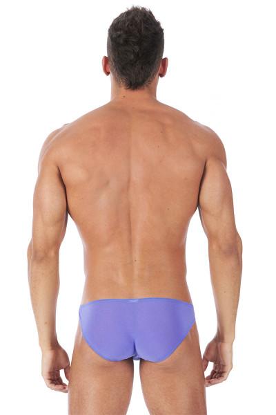 Gregg Homme Torridz Brief 87423 - Purple - Mens Briefs - Rear View - Topdrawers Underwear for Men