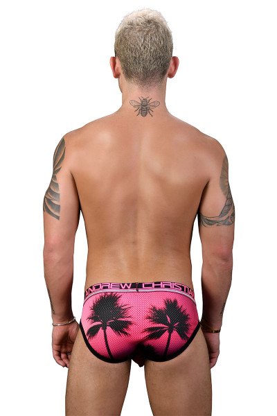 Andrew Christian California Sunset Mesh Brief w/ Almost Naked 91185 - Mens Briefs - Rear View - Topdrawers Underwear for Men