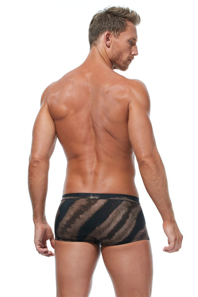 Gregg Homme Nordic Spa Swim Boxer 173345 - Mens Swim Trunks - Rear View - Topdrawers Swimwear for Men