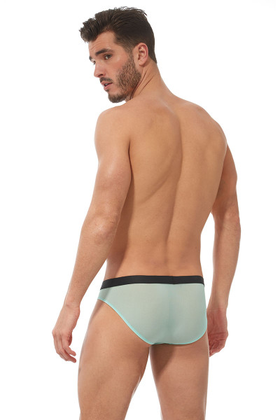 Gregg Homme Torridz Brief 87423-MI Mint Green - Mens Briefs - Rear View - Topdrawers Underwear for Men